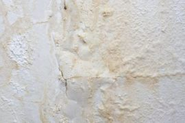 natte muur